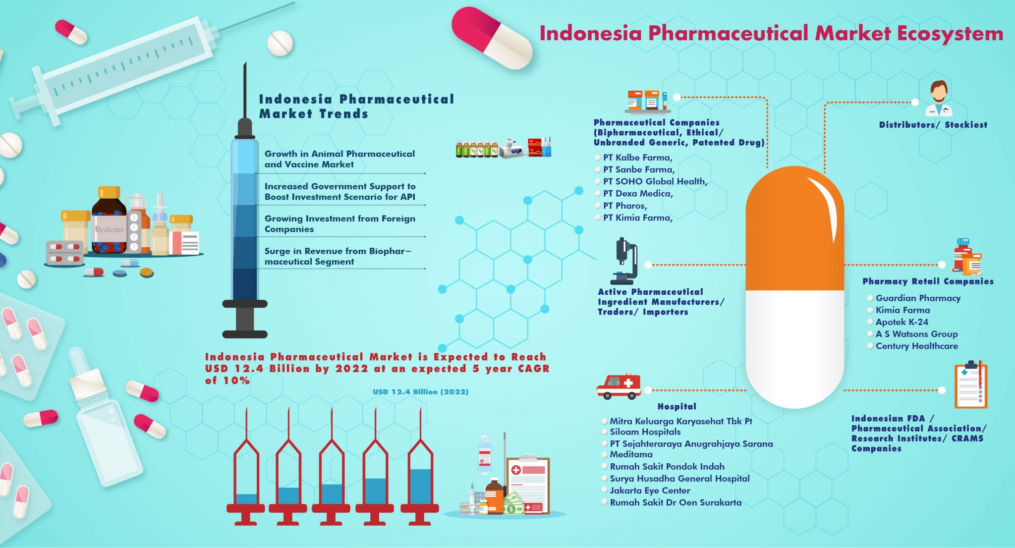 Indonesia Pharmaceutical Market Ecosystem