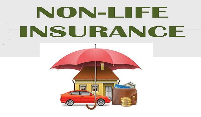 South Africa Non Life Insurance Industry Overview, South ...