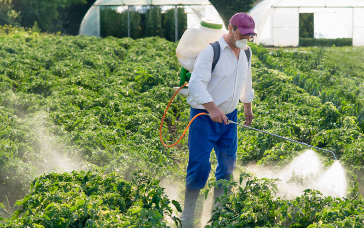 herbicides-market-research.jpeg