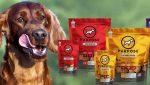 Argentina Pet Products Market Research Report