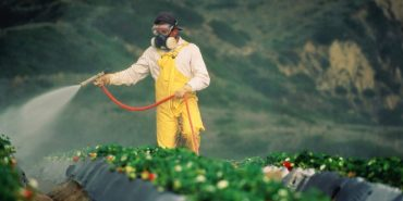 Thailand Crop Protection Market by Type (Pesticides (Herbicides, Insecticides, Fungicides, Others) and Bio-Pesticides (Bio-Chemical Pesticides, Microbial Pesticides, Others)) by Crop Type (Cereal, Vegetable and Forage Crops) – Outlook to 2022: Ken Research