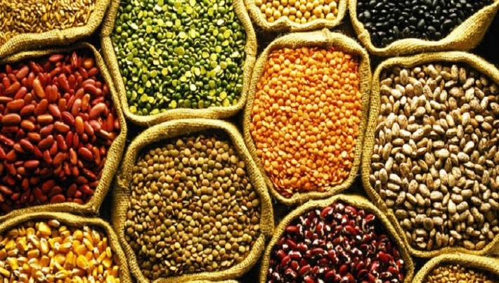 Seed-Market-Research-Report-1.jpg