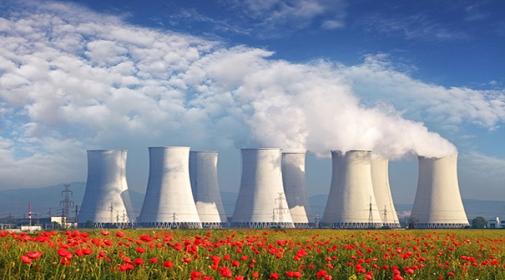 Nuclear-Plant-Life-Extension-PLEX-Market-research-report.jpg