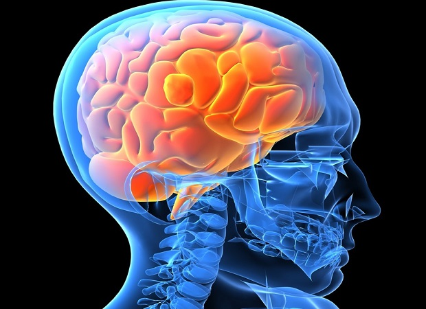Image result for Epilepsy Therapeutics Market