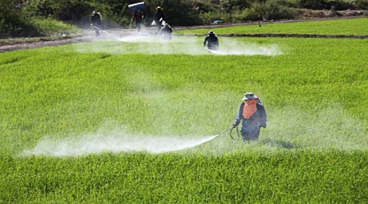 Global-Crop-Protection-Market-Research-Report.jpg