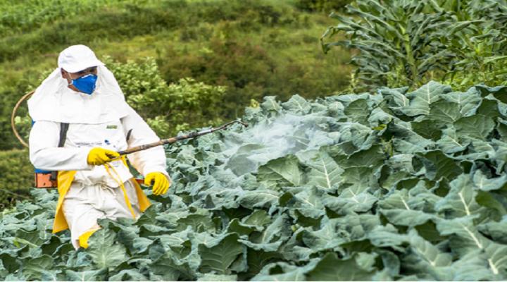 Crop-Protection-Chemicals-Market-Revenue.png