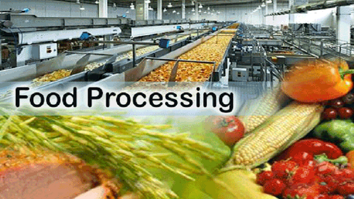 Food-Processing-Market.png