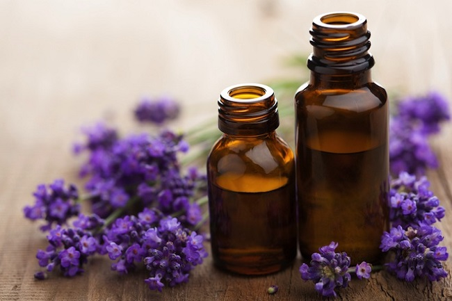 Global Lavender Essential Oil Extract Market, Global Lavender Essential Oil  Extract Industry, Lavender Essential Oil Extract Market Research Report -  Ken Research