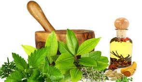 Ayurveda in India, Ancient Remedies for Modern India