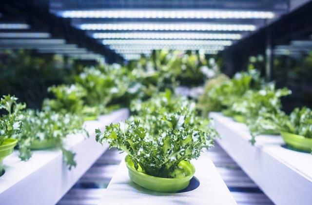 Global-Agricultural-Biologics-Market.jpg