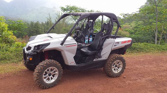 Global-ATV-SSV-Market.jpg