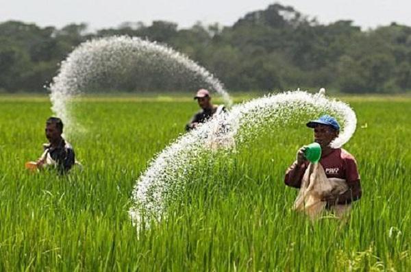 Global-Phosphate-Fertilizers-Market.jpg