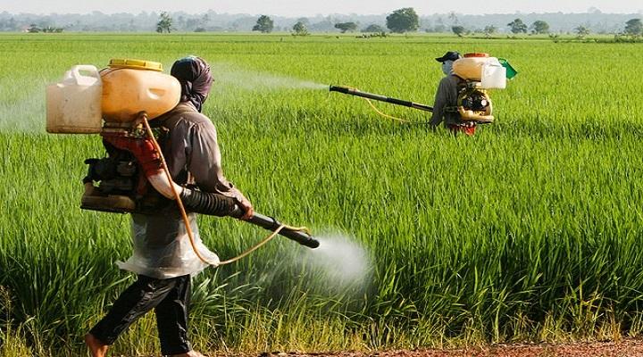 Crop-Protection-Market.jpg