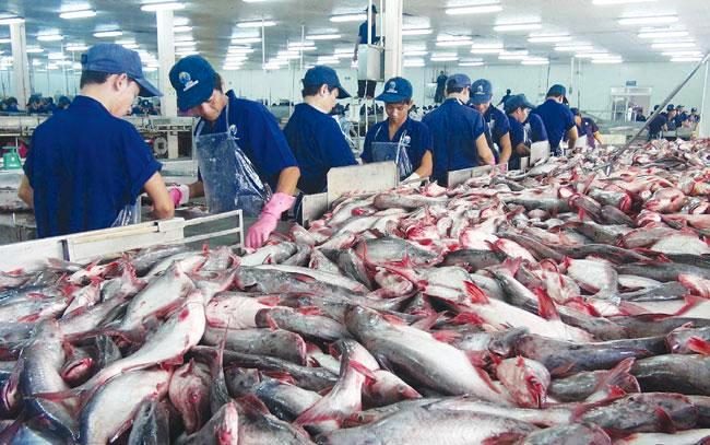 Global-Processed-Seafood-and-Seafood-Processing-Equipment-Market.jpg