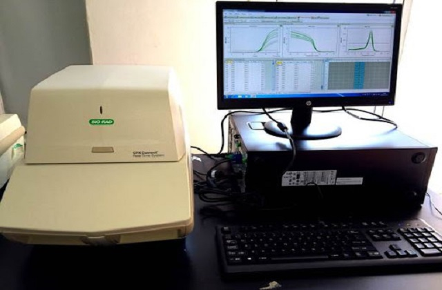 Global-Real-Time-PCR-Detection-Systems-Market.jpg