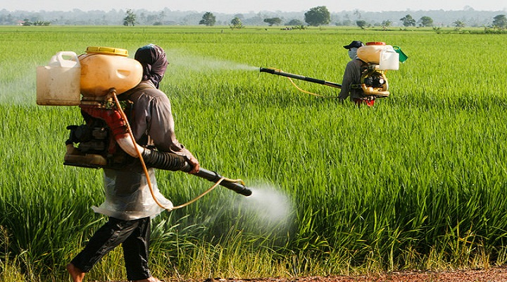 Crop-Protection-Market-Research-Report.jpg