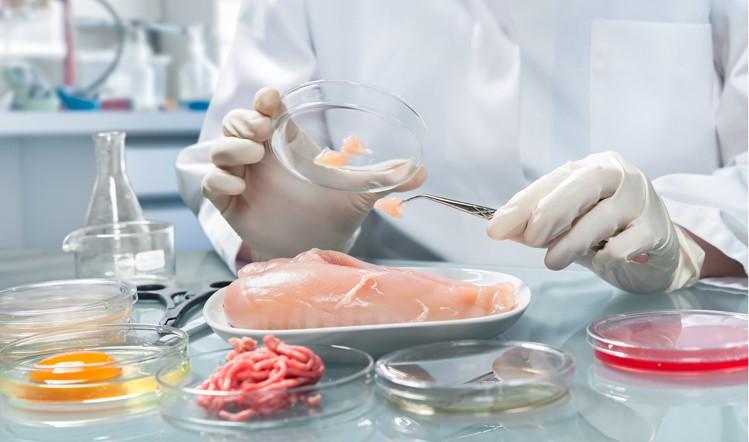 Global-Food-Safety-Testing-Market.png