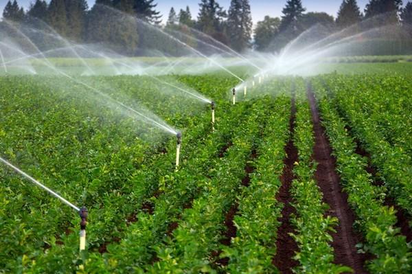 Global-Irrigation-Automation-market-ken-Research.jpg