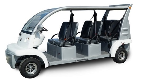 Global Low Speed Electrical Vehicle market